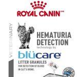 HEMATURIA_DETECTION_-FACING_Med._Res.___Basic_83614